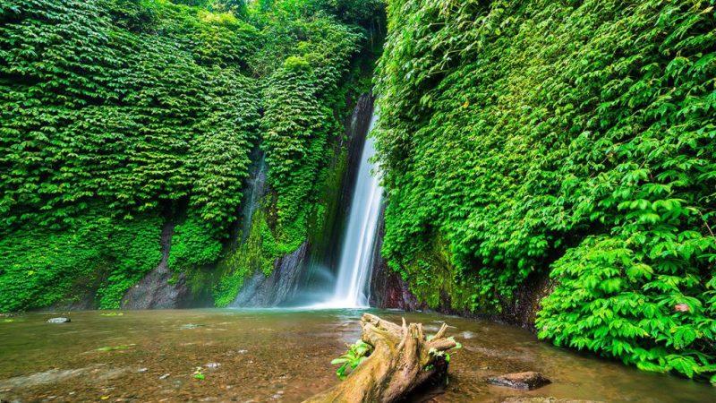 Wisata Air Terjun Melanting di Buleleng, Bali